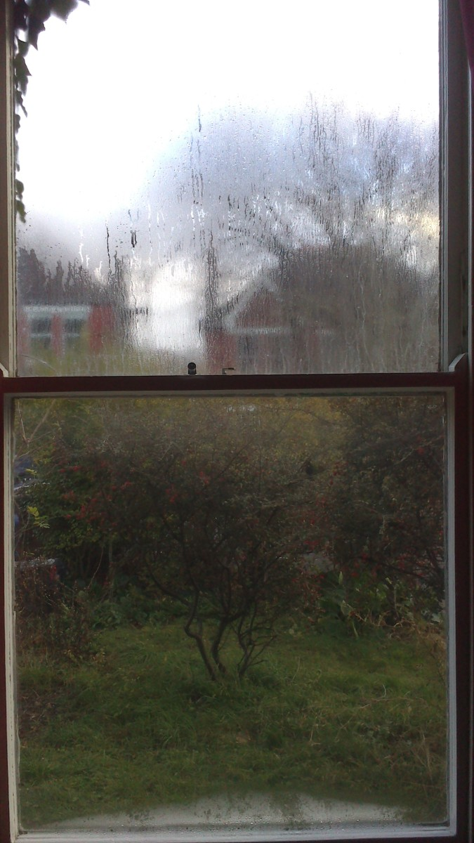 Here you can see the bottom half of the window is covered with window film and the top half is not.  You can clearly see how the window film has improved the insulation and reduced condensation.
