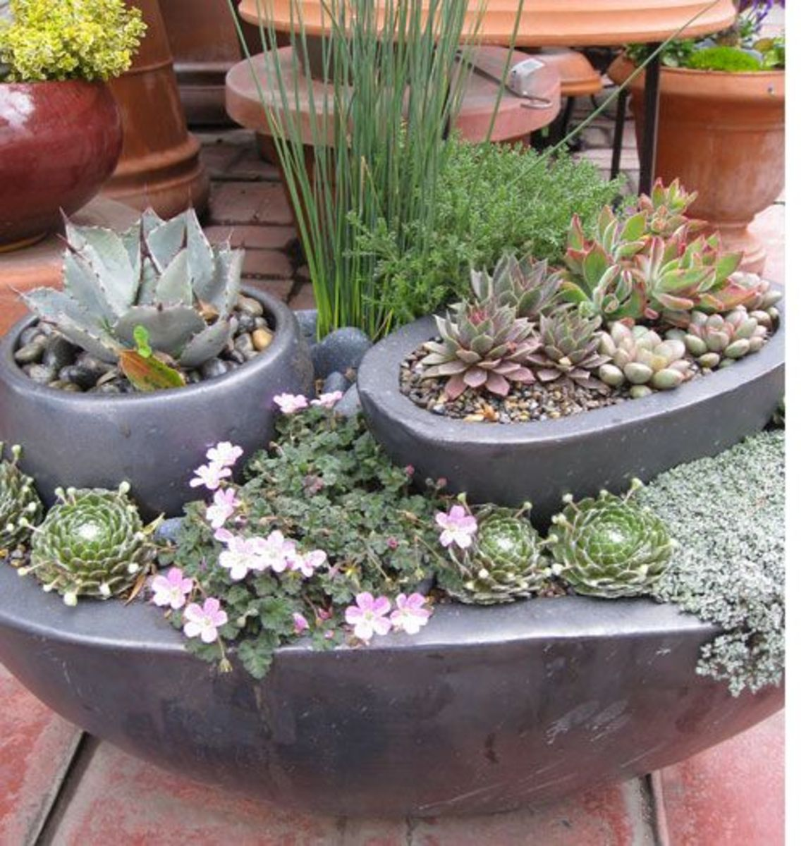 Placing pots within pots in order to created a layered garden is a great idea when short on space outside.