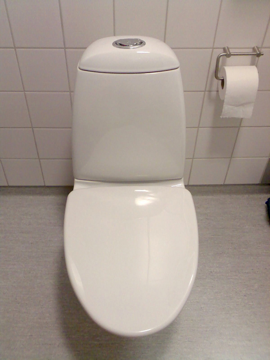 Dual-flush toilets save water.