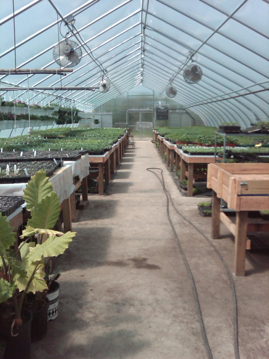 Greenhouse with fans