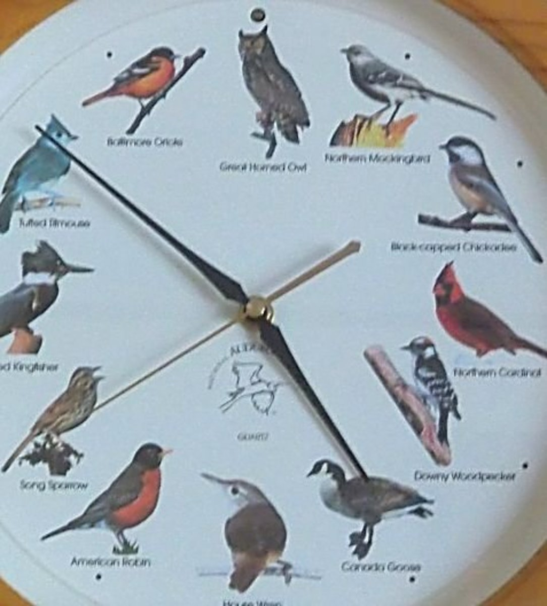 Is the bird that appears on the hour out of sync with the one that's singing?