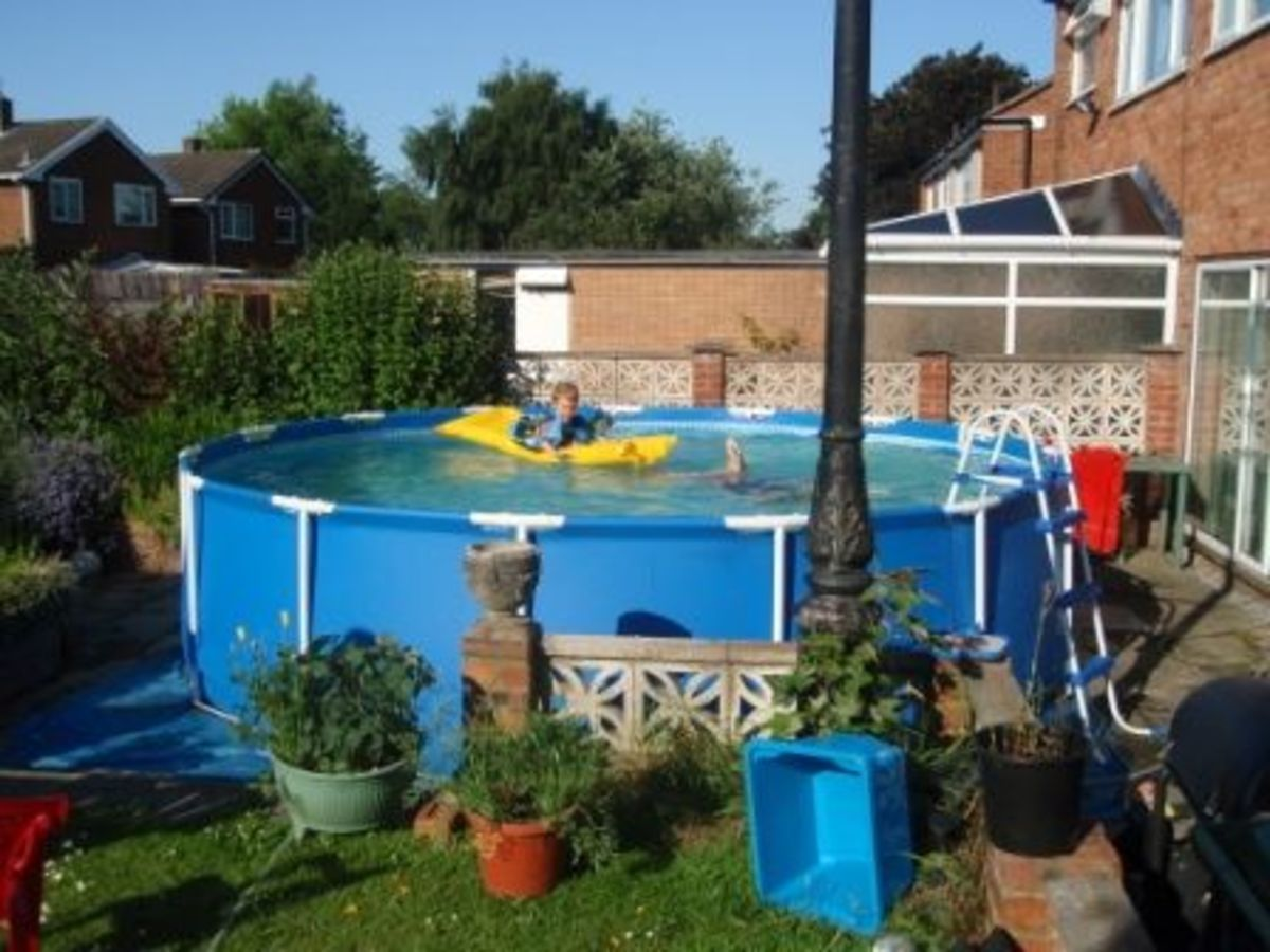 The pool on the patio, view from the garden