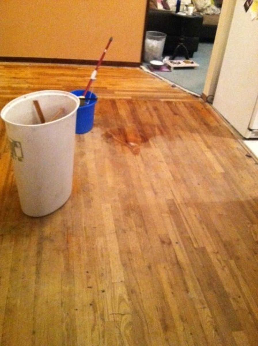 Sweep & Mop the Floor
