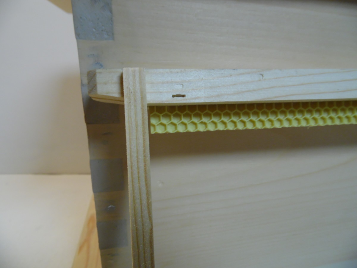 Wooden frame with starter strip of foundation.