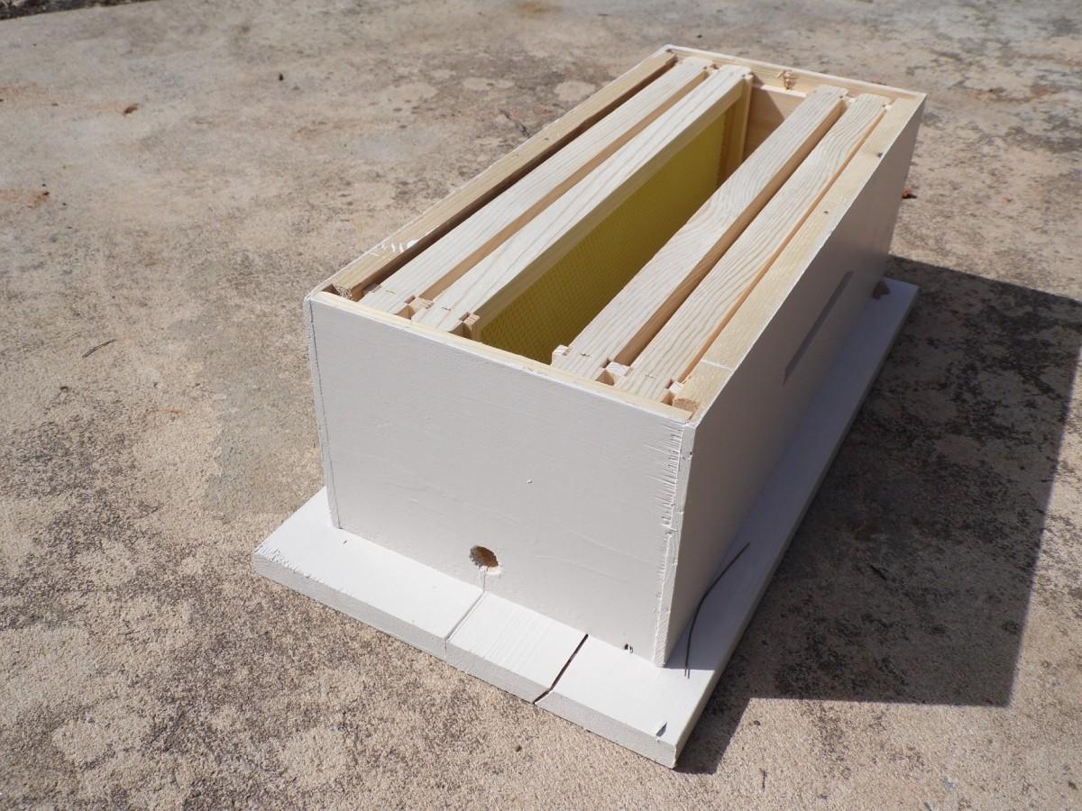 Small honey bee swarm trap.