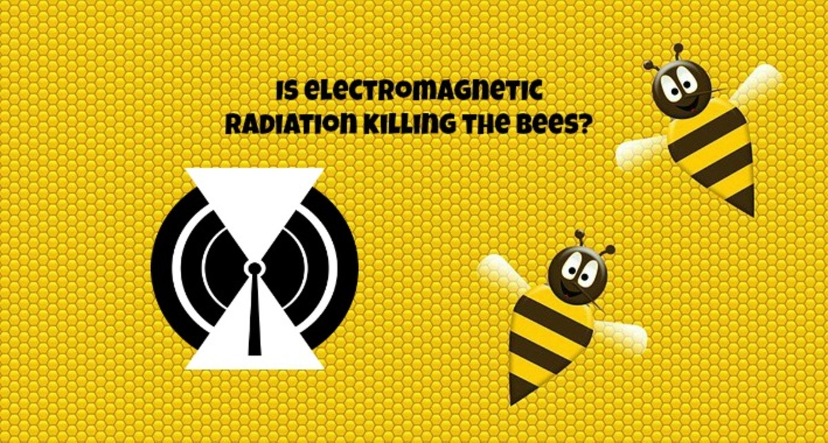 Electromagnetic radiation may be contributing to the death of honey bees and to colony collapse disorder.
