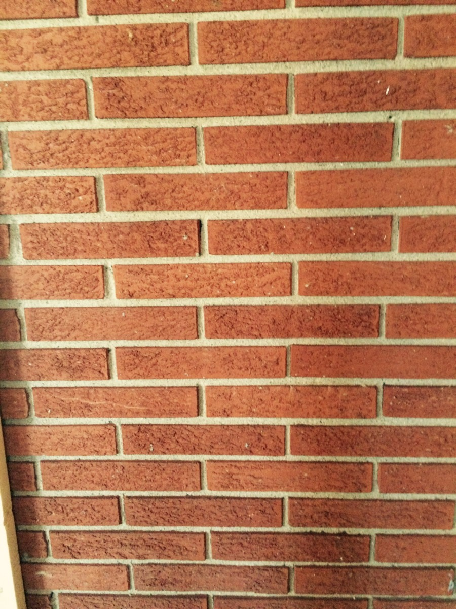 Here's my brick wall before painting. Clean, but dingy and red. Need I say more?