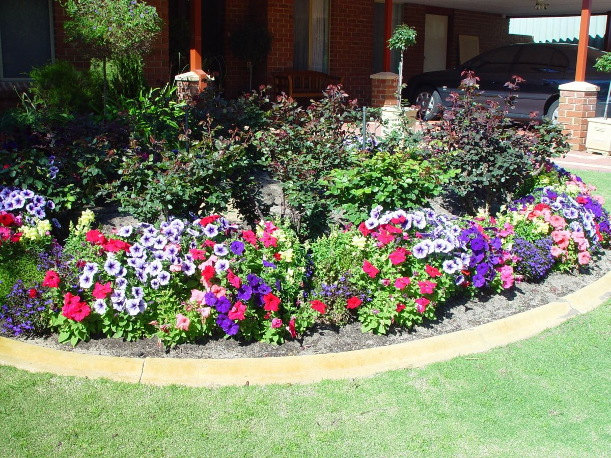 A Small Garden with Perennial Flowers Surrounded by Annual Flowers