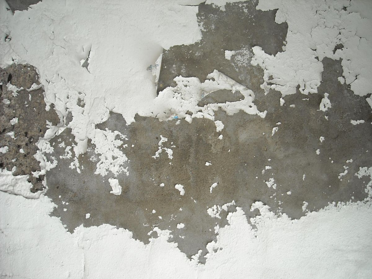 A Painted Surface Affected by a Corrosive Substance