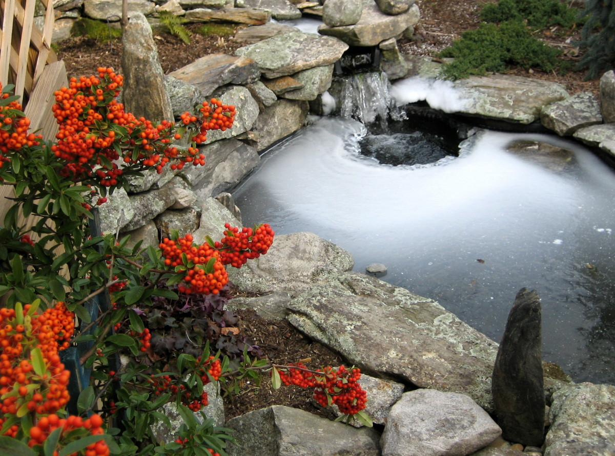 a pond edged with stones