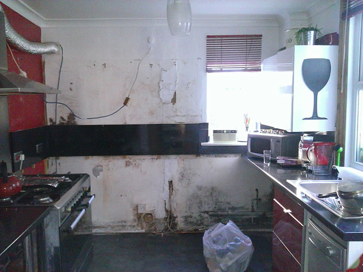 Dismantling The Kitchen