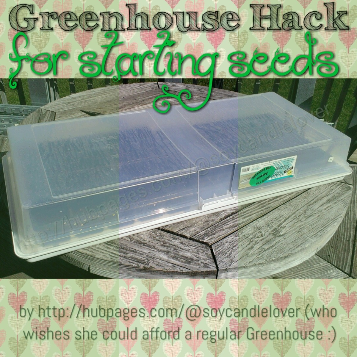 Greenhouse Hack for Starting Seeds for Your Garden