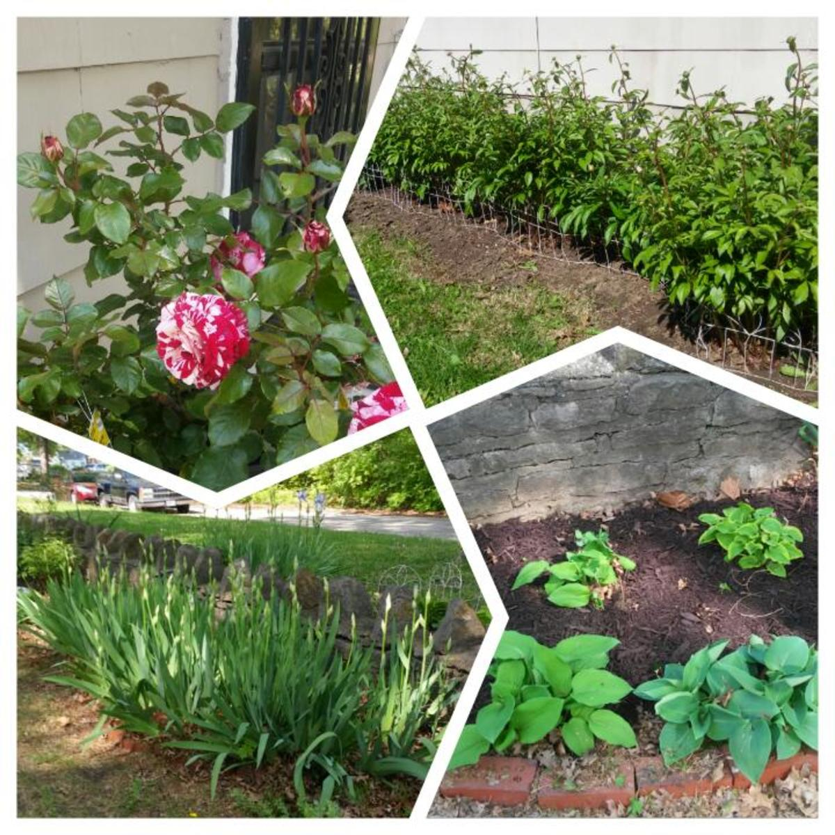 Flower beds in the front and side yards.
