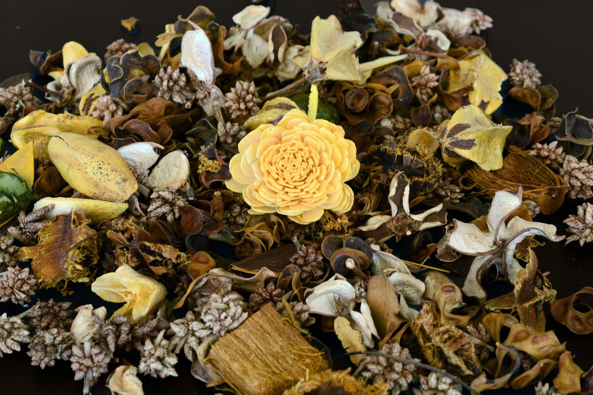 Dried flowers and other items will create a nice aromatic home fragrance when simmered in a pot.