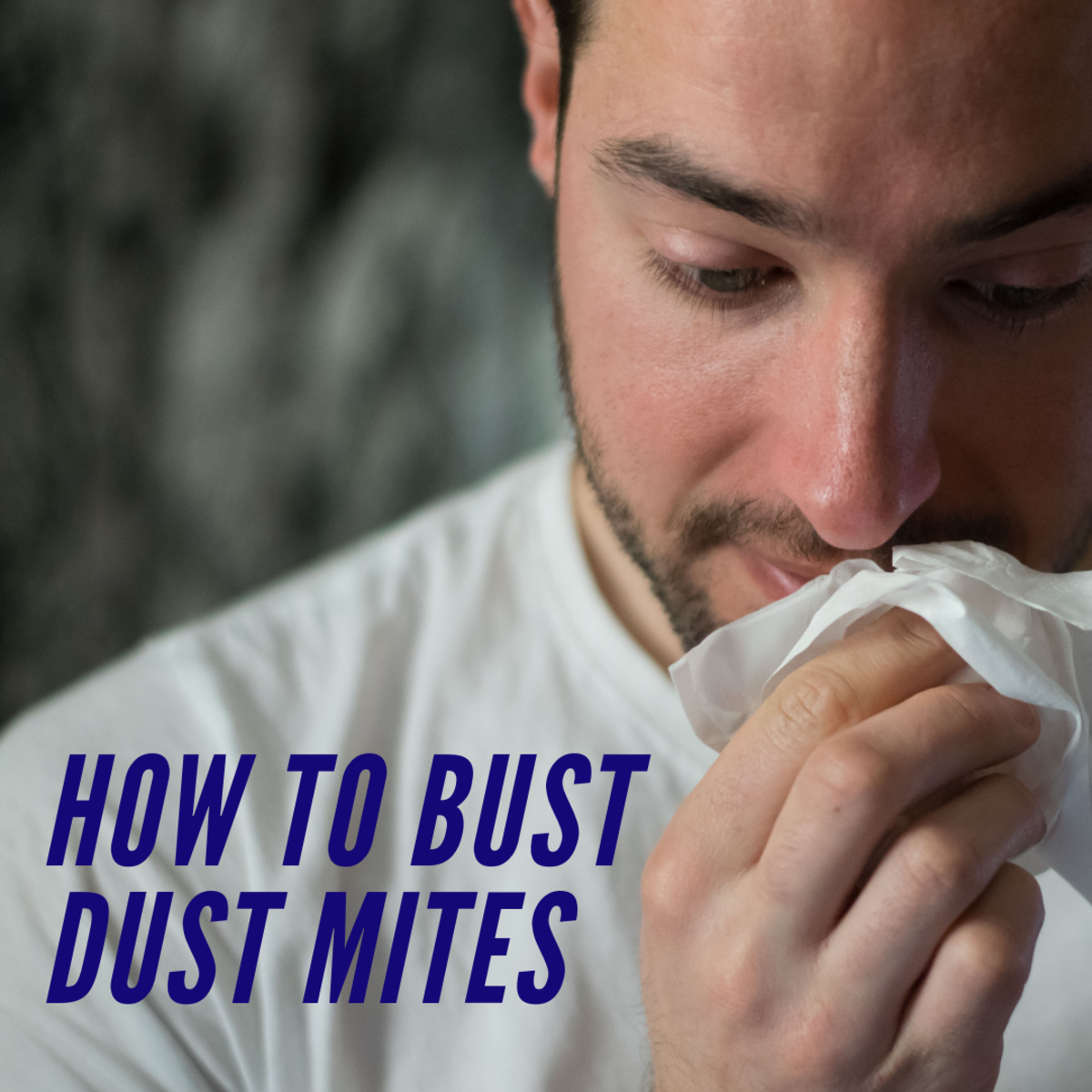 How to bust dust mites.