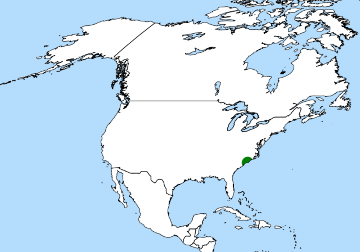 The Venus flytrap has a tiny distribution (the green area) in the wild.