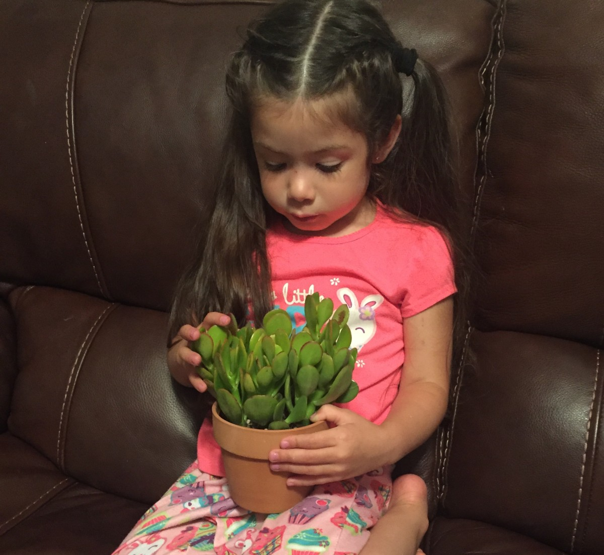 A healthy jade plant, and my daughter, Jade.
