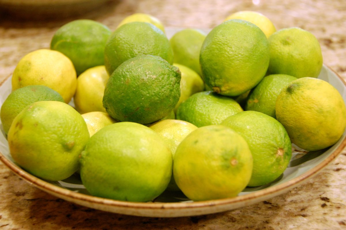 Citric acid can be harmful to metal over time.