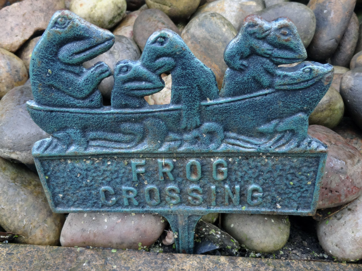 'Frog Crossing' sign, as a new feature to the pond makeover.