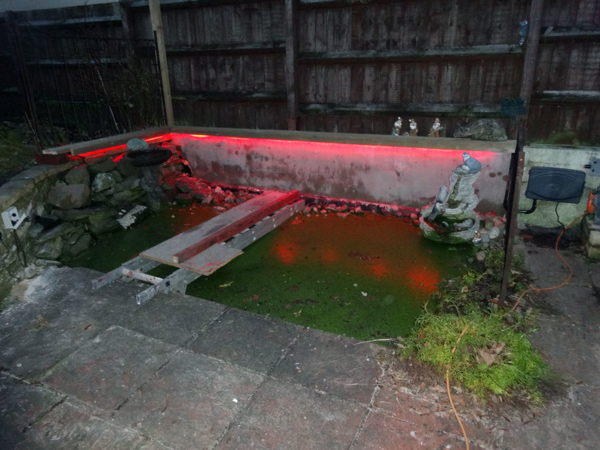 Test run of the new pond lighting before continuing with the rest of the electrics.