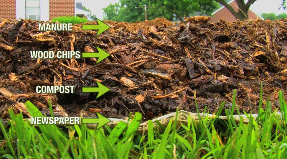 Different types of gardening and soil preparation for