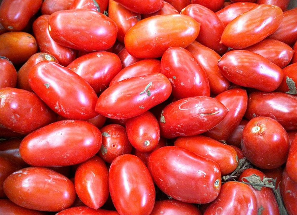 San Marzano tomatoes are oblong in shape with pointed ends