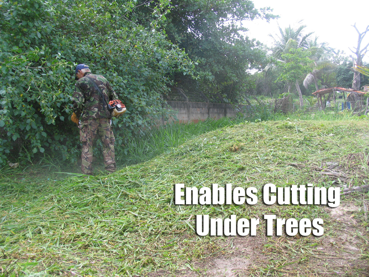 Using a Brush Cutter under Trees