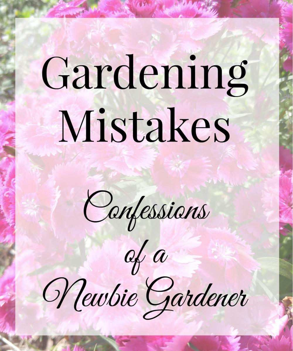Gardening Mistakes: Confessions of Newbie Gardener