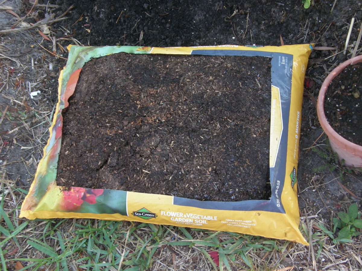 Leave a two inch border to keep the soil supported on all sides.