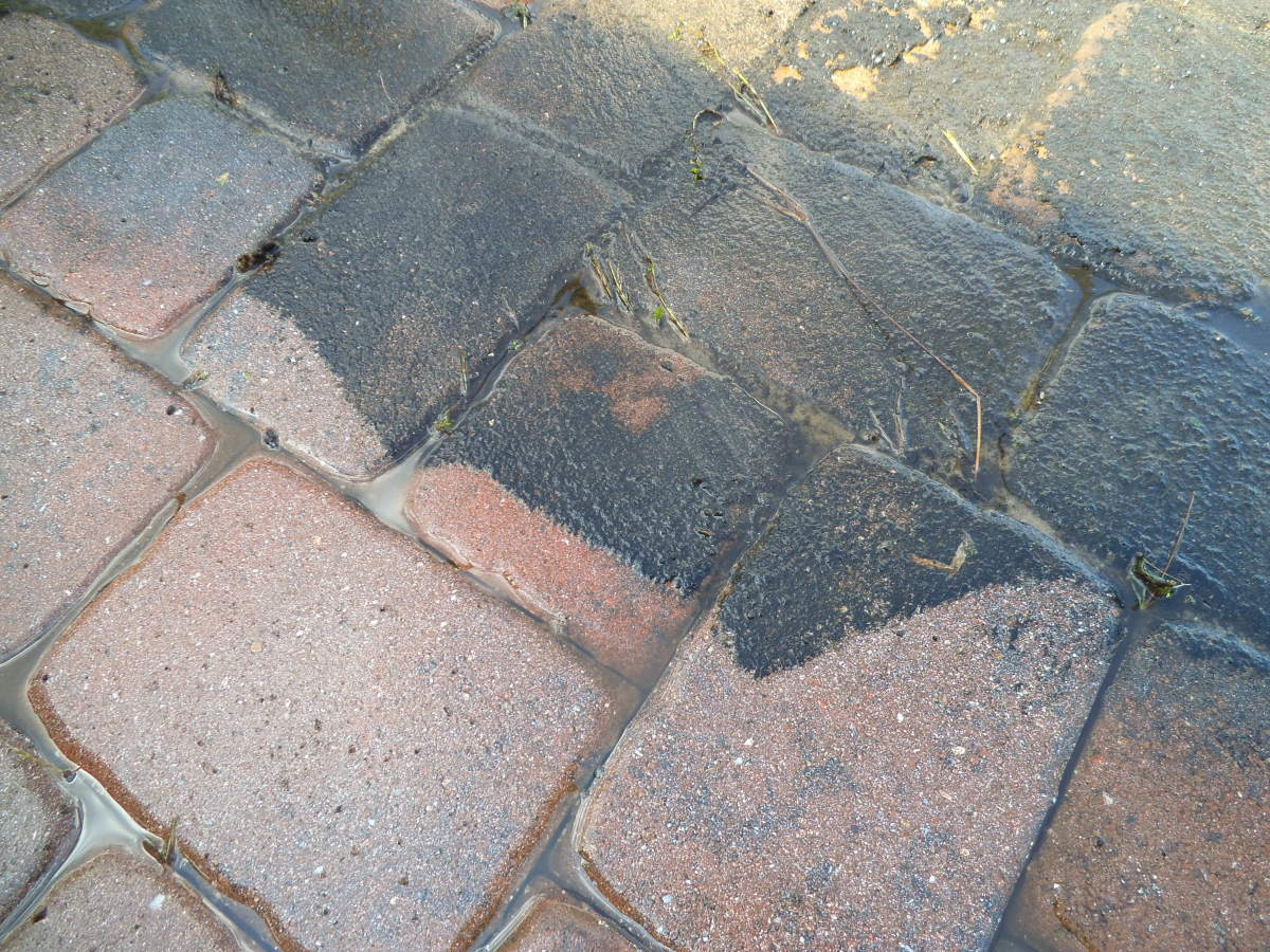 Since many Floridians are snowbirds, they head north in the steamy summers. When they return, the pavers in their screen room might look like this. The pressure washer removes the mold, as you see here.