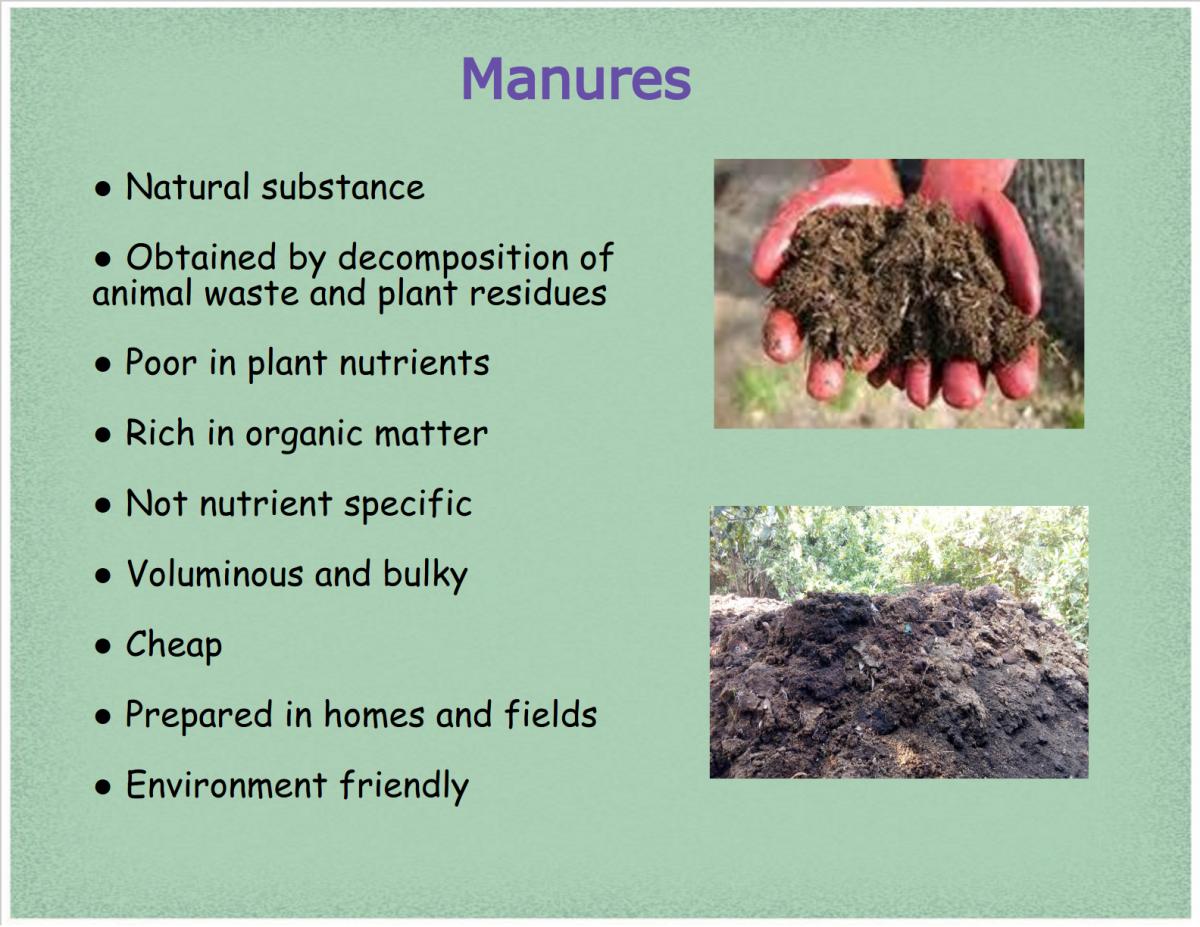 manures-types-advantages-and-disadvantages