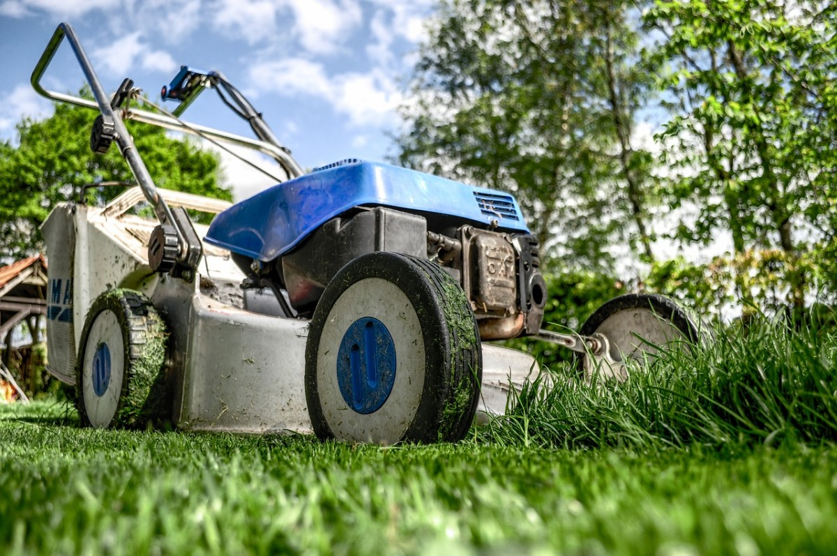A mowed lawn means less places for a snake to hide. The vibrations of the mower will also scare them away momentarily.