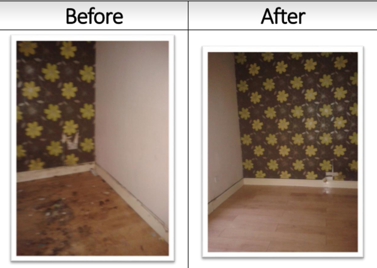 The landlord was going to just throw away this laminate floor before we got it looking like new again.