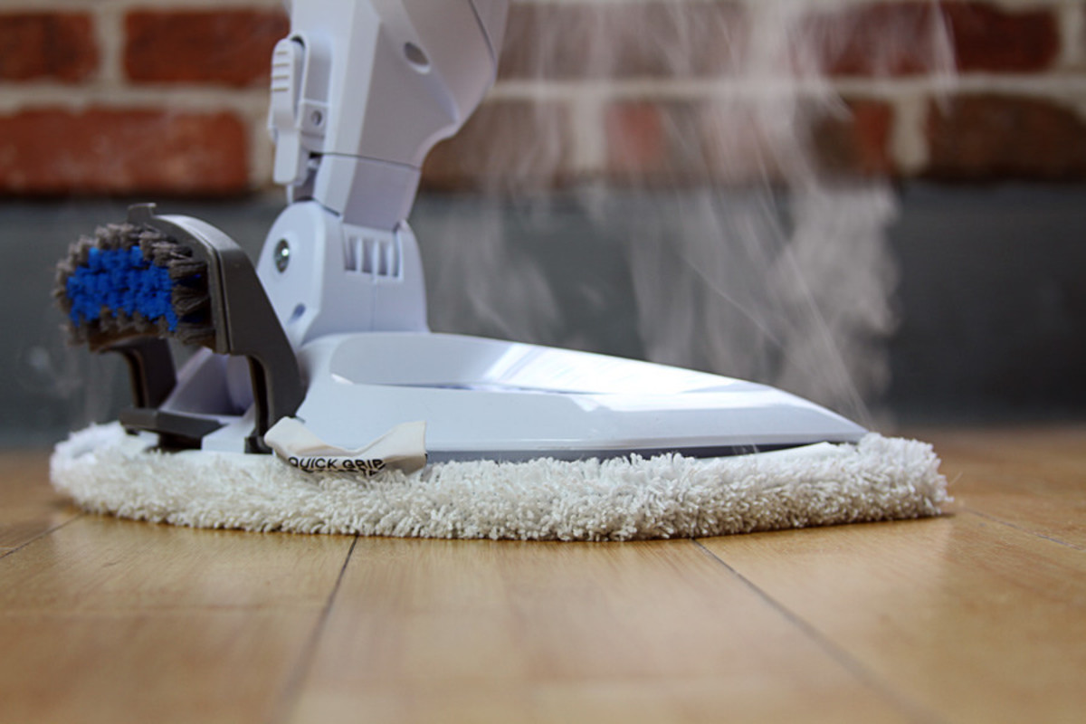 Steam mops are a great way to kill both bed bugs and their eggs, and as a bonus, they can also serve various other cleaning roles around the house.