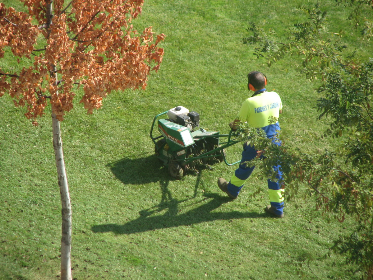Lawn Care Maintenance: Seven Tasks for Fall