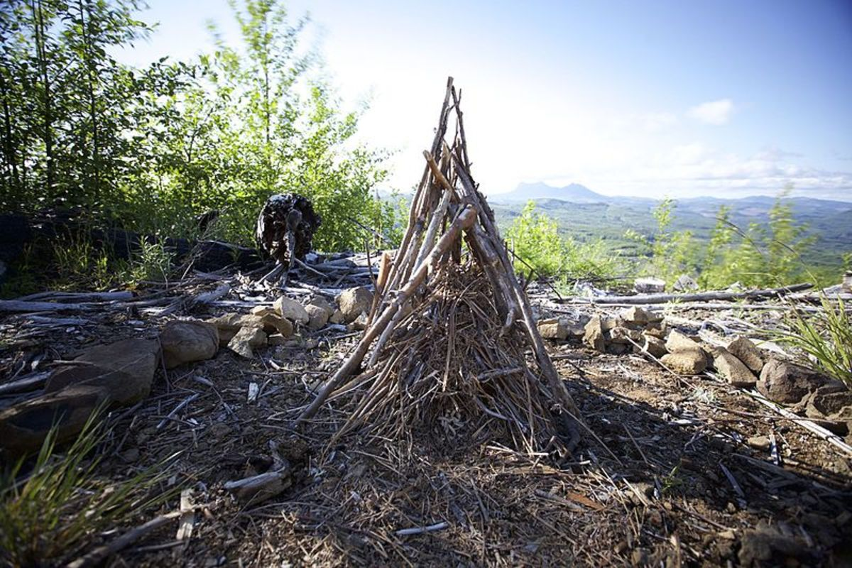 A teepee fire awaiting lighting.  The tinder is at the very center, surrounded by successively larger pieces of fuel.  You can follow this model on a smaller scale.