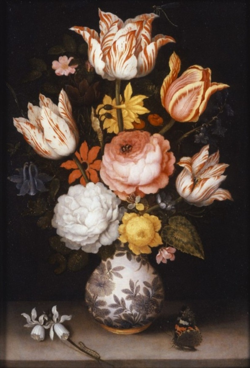 what-are-rembrandt-tulips