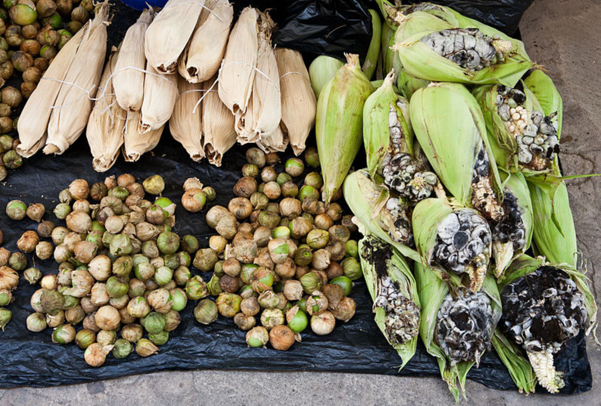 Corn smut for sale in a Mexican street market