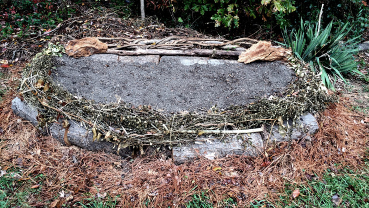Log raised garden bed made and photographed by Robert Kernodle