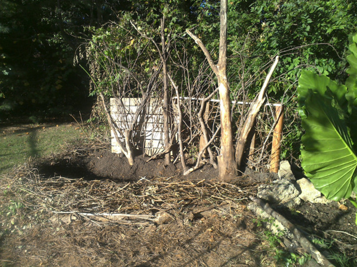 How to Build Raised Garden Beds Using Free Materials From Nature