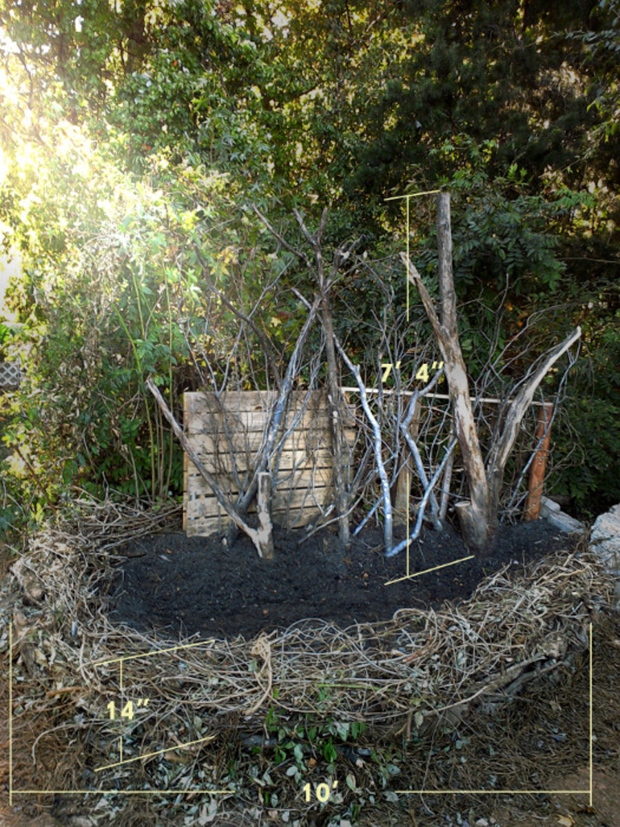 Photo of garden bed made of free natural materials by Robert Kernodle