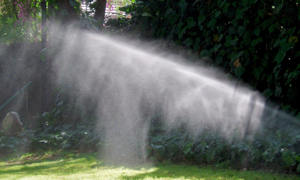 Rotary sprinkler heads are best to use for medium and large turf areas. Because they rotate, they give the soil time to absorb water, before the rotation comes back again.
