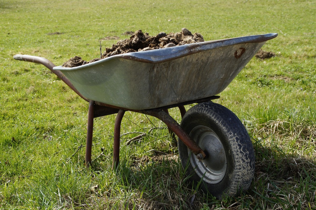 Before you embark on the physically demanding task of digging over your garden, consider whether it's really necessary.