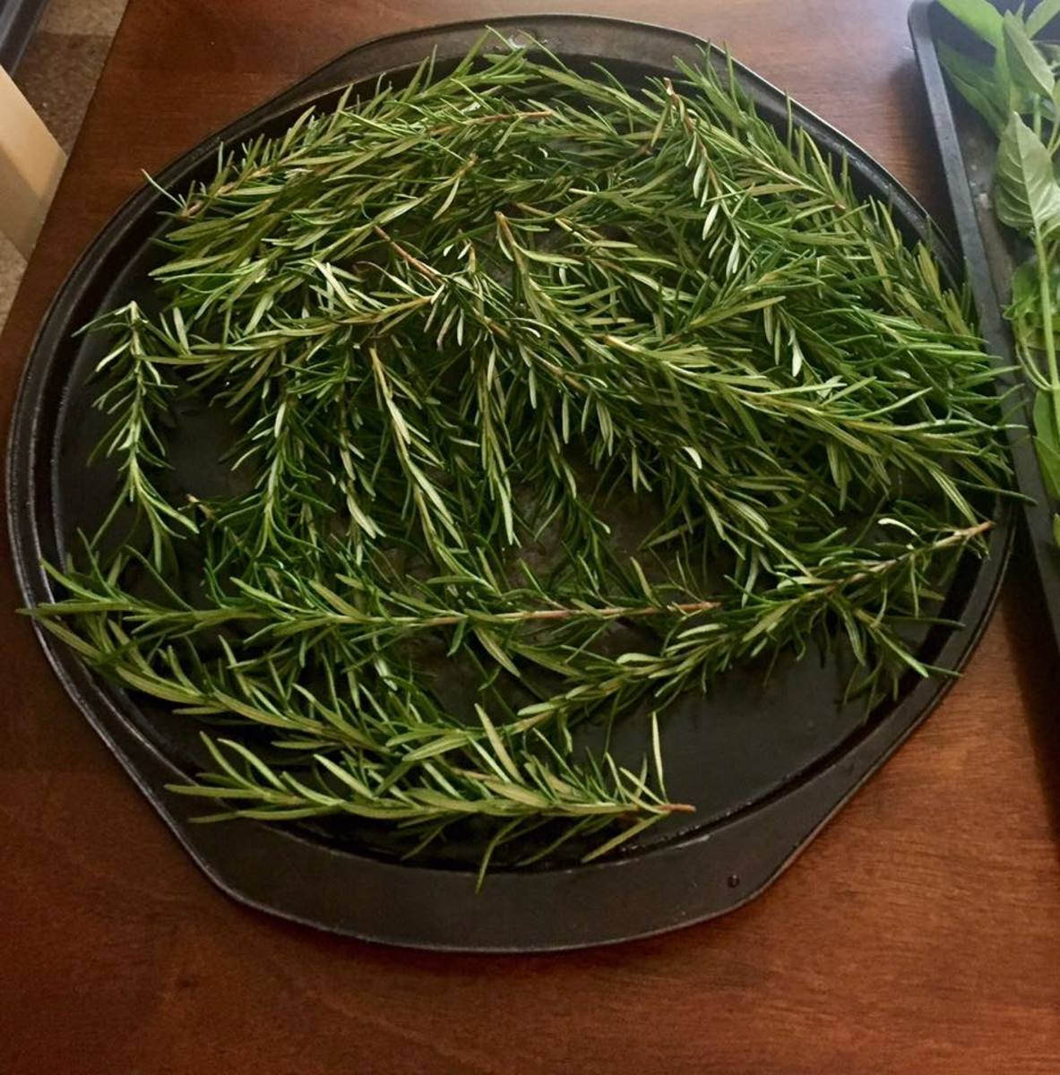 Rosemary can be air-dried or oven-dried—rosemary oven drying prep pictured above.