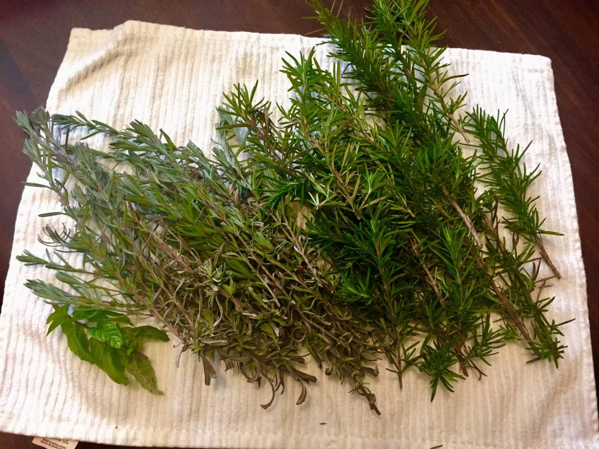 Air drying rosemary on a towel.