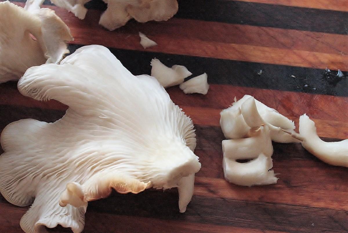 the-joy-of-tabletop-winter-mushrooms