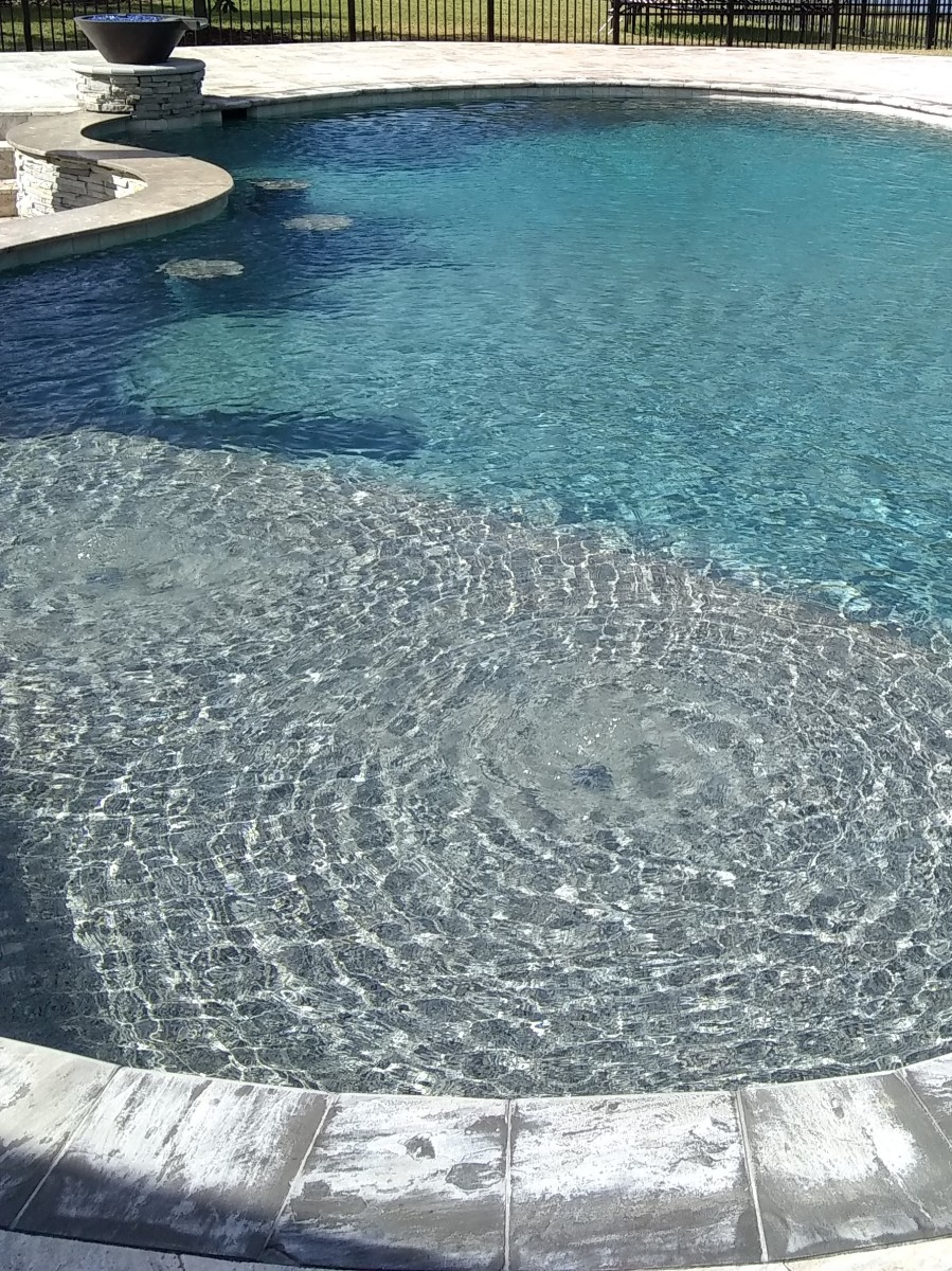 Getting Your Swimming Pool Ready for the Summer. What Lies Dormant in the Winter Water May Surprise You!