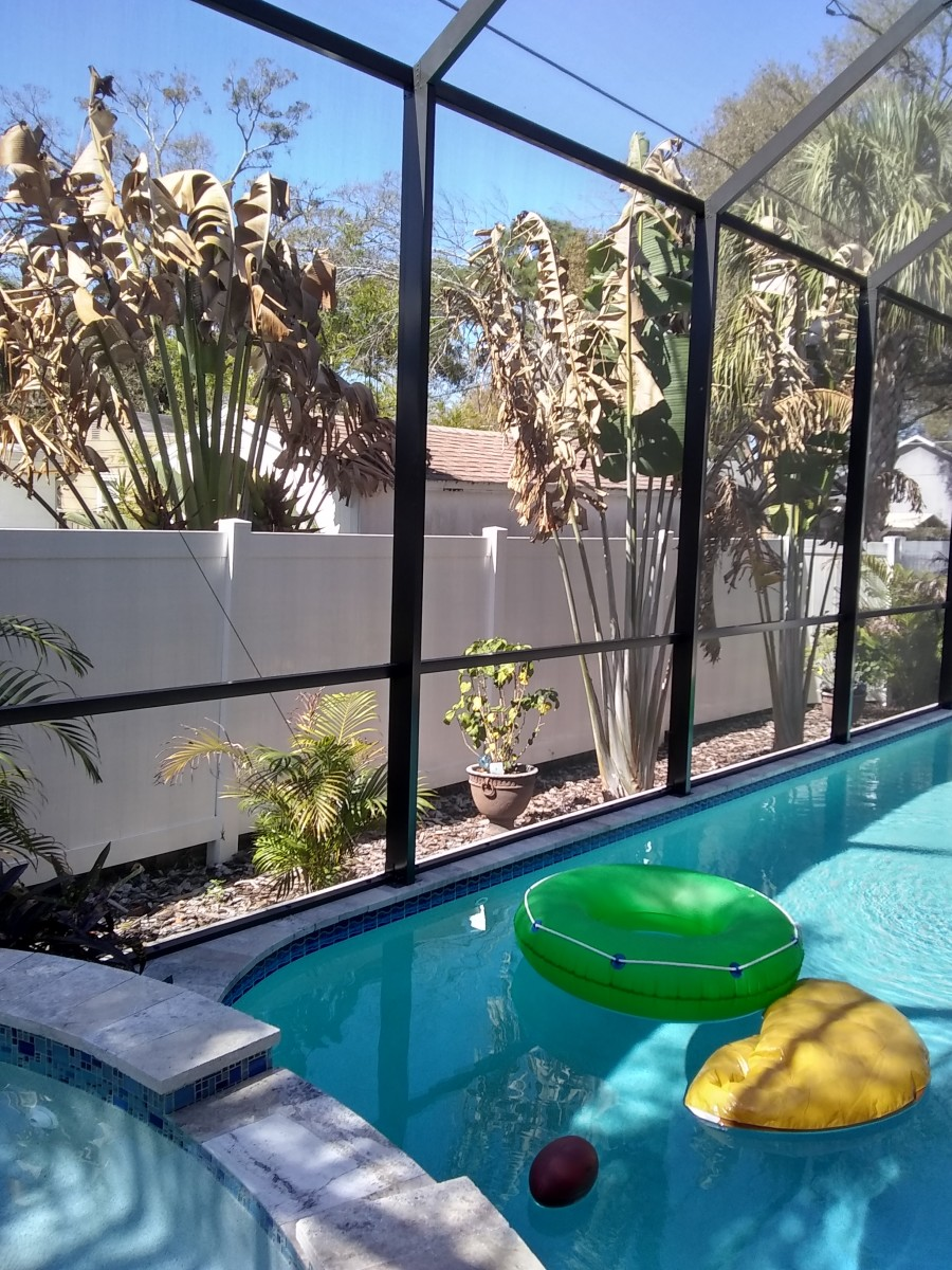 Benefits and Disadvantages of Swimming Pool Screen Enclosures