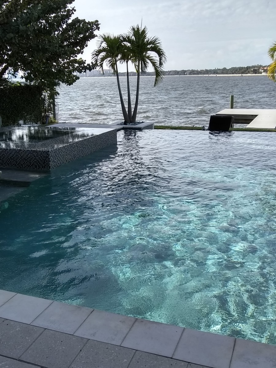 This open infinity-edge pool doesn't need a screened enclosure.