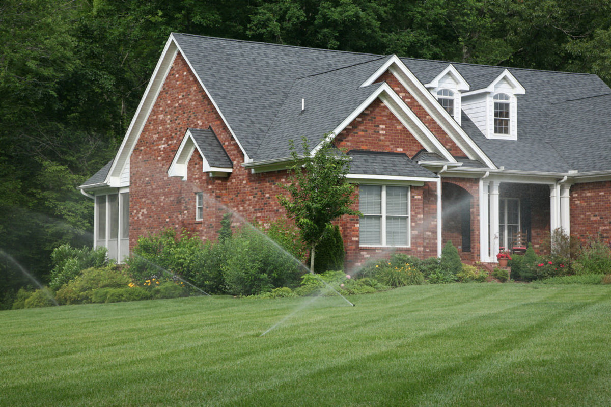 Watering a lawn during its growing season keeps it healthy and vibrant.